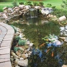Backyard Pond Building 25 Best Ponds Images On Pinterest