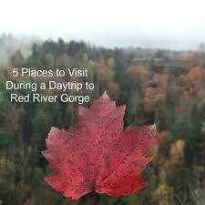 5 places to visit during a daytrip to river gorge river