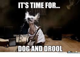 Drooling Meme - 25 best memes about drool meme drool memes