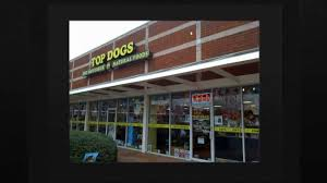 top dog pet boutique pet supply store in kennesaw ga youtube