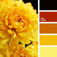 Warm Colors 376 Best Color Images On Pinterest Colors Color Balance And