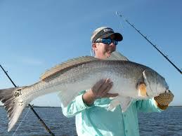 Maps Tampa Tampa Bay Fishing Map Gps Fishing Maps
