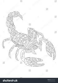vector illustration scorpion zentangle ethcnic style stock vector