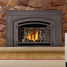 Btu Gas Fireplace - best 25 gas fireplace insert prices ideas on pinterest