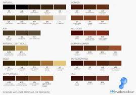 colour shades with names light brown hair color shades medium hair styles ideas 38178