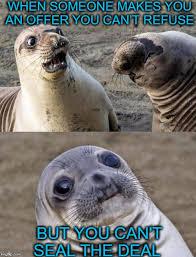 Awkward Seal Meme - two awkward seals imgflip