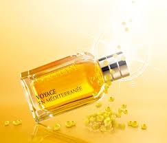 l occitane en provence si e immortelle de corse l occitane en provence perfume a fragrance for
