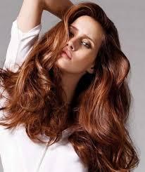 Chestnut Hair Color Pictures Natural Medium Brown Hair Color Chestnut Brown Hair Color Hair