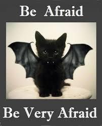 Meme Halloween - halloween memes