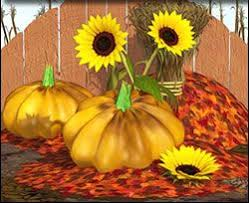 70 best jigsaw puzzles fall images on harvest