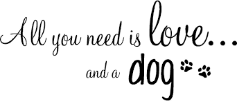 amazon com all you need is love and a dog inpsirational home amazon com all you need is love and a dog inpsirational home vinyl wall quotes decals sayings art lettering home kitchen