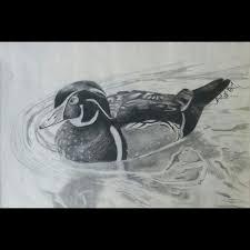 man u0027s best friend sketches drawings u0026 illustration animals