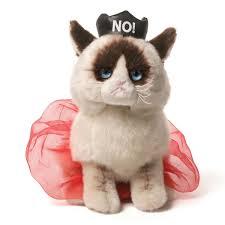 Grumpy Cat No Meme - grumpy cat 9 plush no queen sayings pinterest grumpy cat