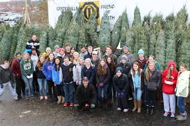 christmas tree lot u2013 celebrating our 50th year in 2017