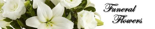 flowers omaha dundee florist for flowers in omaha ne 675 no 50th
