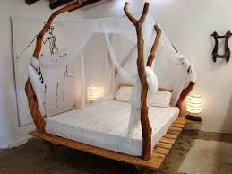 Bed Frame With Canopy Alluring Canopy Bed Frames Design Ideas 17 Best Ideas About Canopy