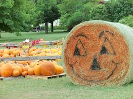 Pumpkin Patch Frisco Tx by 7 Things To Know In Lake Travis And Westlake This Week Sept 25