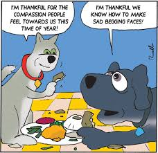 to an even happier thanksgiving
