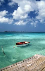 53 best aruba images on pinterest aruba aruba aruba honeymoon