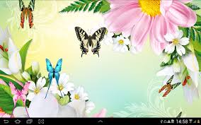 butterflies live wallpaper hd android apps on google play