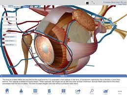 Human Anatomy Atlas App Shopper Human Anatomy Atlas Sp U2013 Free 3d Anatomical Models Of