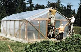 Backyard Green House by Backyard Greenhouses News Eacourier Com
