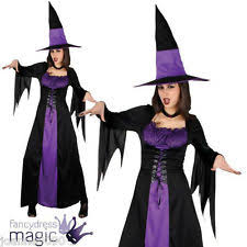 Wicked Witch Halloween Costume Wicked Witch Costume Ebay