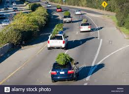 cars and suvs driving on the highway with trees to
