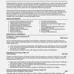 nice resume for business owner u2013 resume template for free