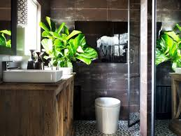 Bathroom Flowers And Plants Plants To Grow In Your Bathroom Hgtv