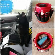 Colorado traveling with cats images Adventuretails tales of traveling kitty jpeg