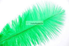 Ostrich Feather Centerpieces Wholesale by Green Emerald Green Ostrich Feathers Wholesale 16 18 Inch 12