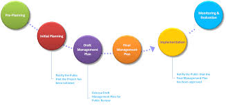 management planning process