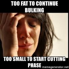 Bulking Memes - too fat to continue bulking too small to start cutting phase