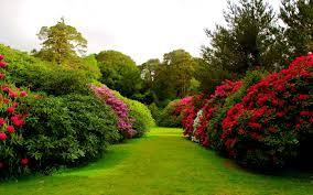 pretty flower garden ideas home flower gardens ideas with garden images great latest flowers