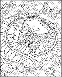 coloring adults butterfly egle stripeikiene size a3