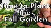 Fall Garden North Texas - north texas gardening how to plant a fall garden in texas youtube