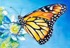 10 beautiful butterfly painting ideas free premium templates