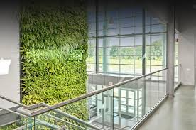Wall Gardening System by Suite Plants Plant Walls For Any Space