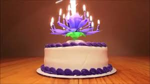 birthday candle flower flowering musical birthday candle