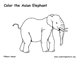 elephant asian coloring