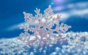beautiful snowflake in winter season hd photos