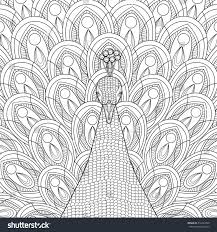 vector hand drawn peacock coloring page stock vector 416261029
