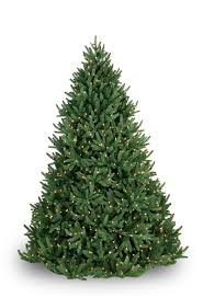 noble fir prelit tree lights etc