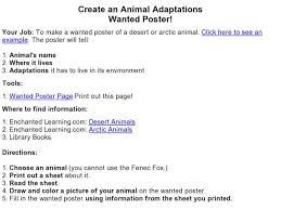 all worksheets animal adaptations worksheets printable