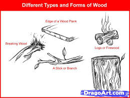 how to draw wood step by step trees pop culture free online