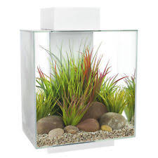 fluval edge aquariums ebay