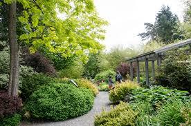 Rock Garden Bellevue by Bellevue Washington News Page 3 Of 30 Discover Bellevue