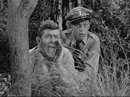 195 best the andy griffith show images on bee
