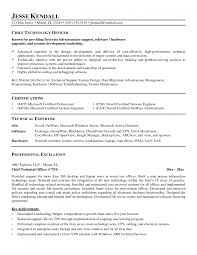Cto Resume Example by Cover Letter Sample Cio Resumes Sample Cio Resumes Example Cio